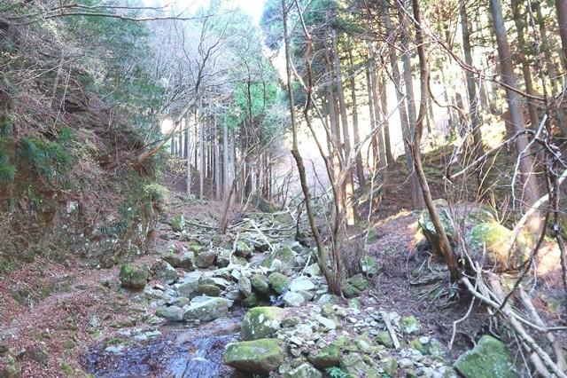 三峰山への登山道雰囲気の様子