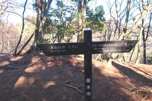 三峰山から大山ルート地点