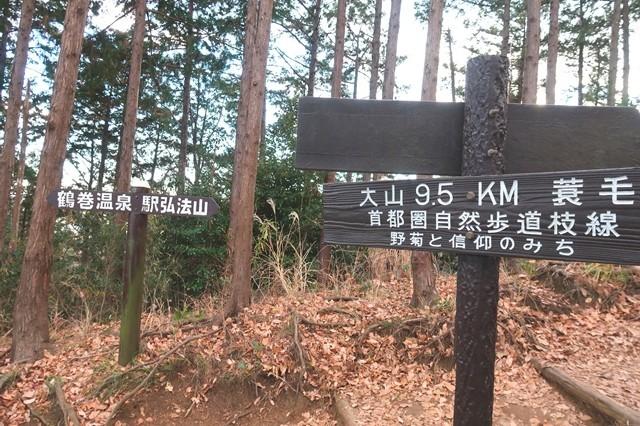 大山・鶴巻温泉駅への分岐