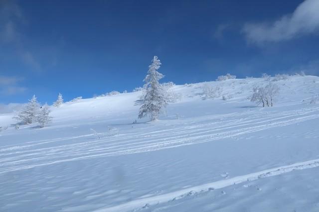 小根子岳と樹氷