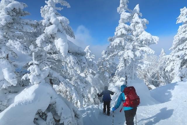 根子岳下山道も雪が多い