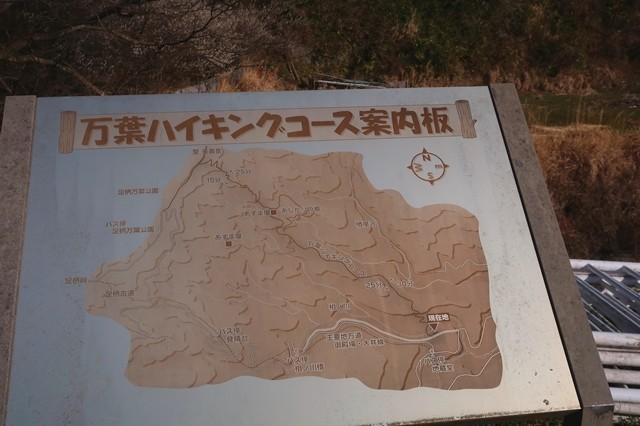 万葉ハイキングコースの案内板