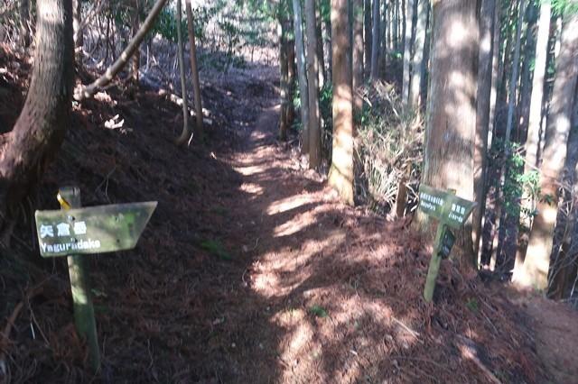 万葉公園と矢倉沢ルートの分岐