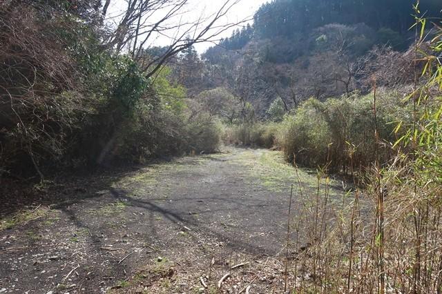 矢倉沢林道の終点