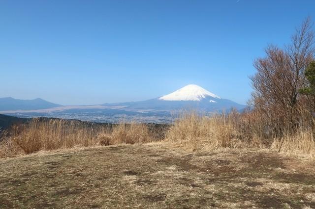 矢倉岳から見る富士山