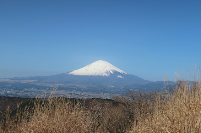 矢倉岳山頂から見る富士山景色