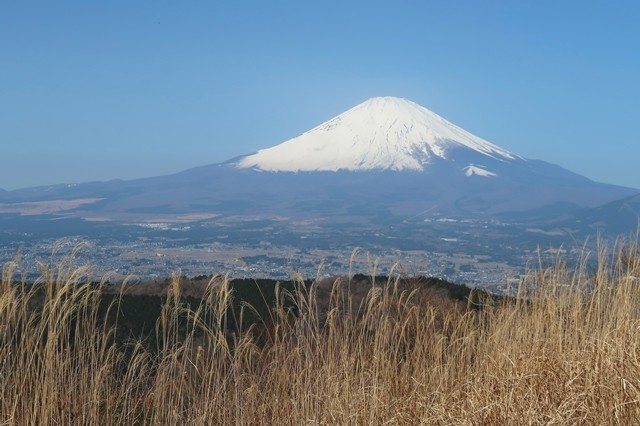 矢倉岳から富士山の景色