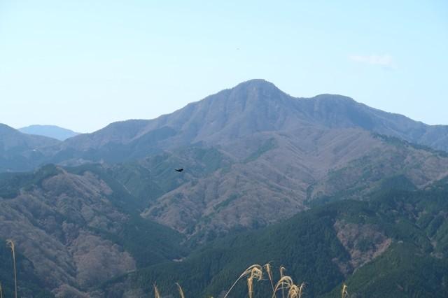 金時山から延びる稜線の景色