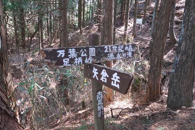 山伏平は足柄峠・金時山方面、21世紀の森、洒水の滝方面、矢倉岳へとルート分岐地点