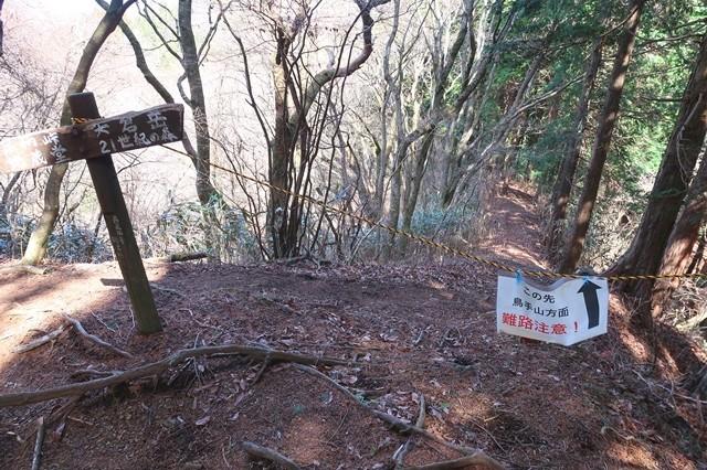山伏平か鳥手山への分岐地点