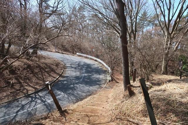 足柄峠の舗装路