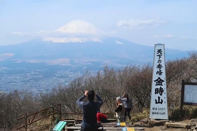 金時山の山頂から見る富士山全景