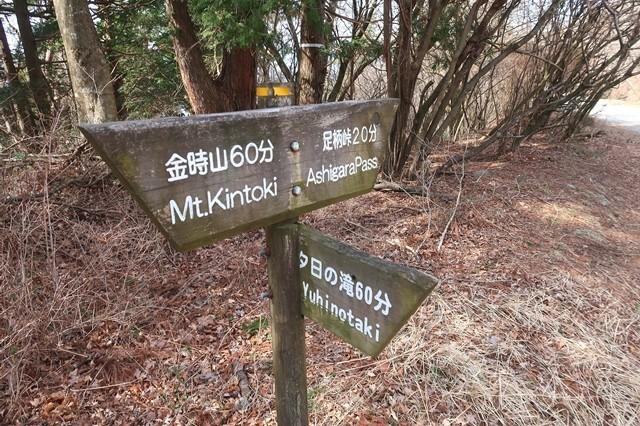 足柄峠ハイキングコースの分岐