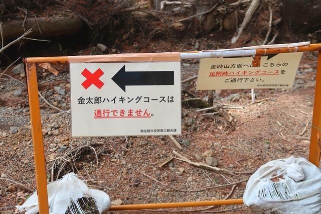 足柄峠ハイキングコース・金太郎ハイキングコース合流地点
