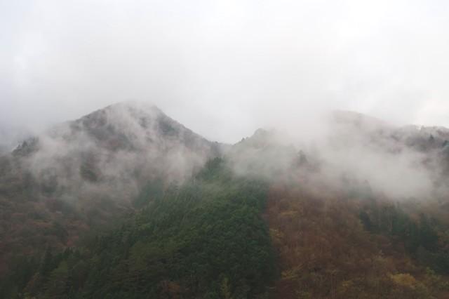 ヨモギ尾根から雲取山登山中の景色