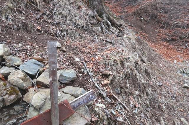 ヨモギ尾根(鉢焼場尾根)登山は終了地点