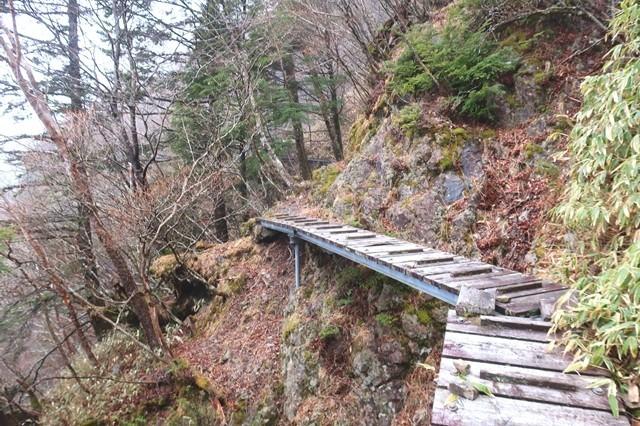 飛龍山登山道の様子