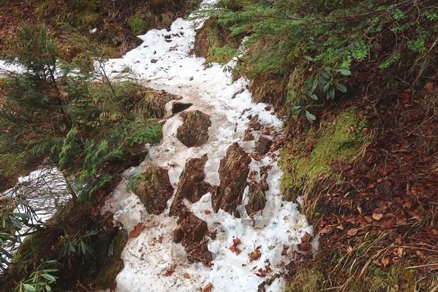 飛龍山奥秩父主脈縦走路上の凍結箇所