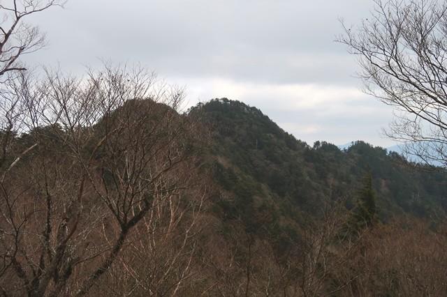 前飛龍山を遠望
