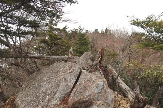 前飛龍山の山頂