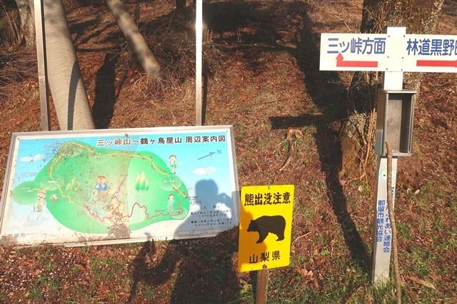 三つ峠北口登山道ツキノワグマの生息域