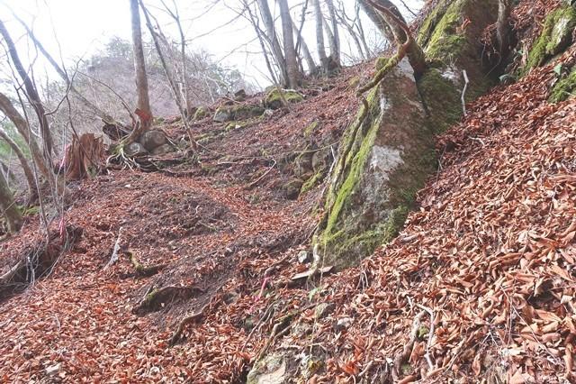 落ち葉で登山道の踏み跡が不明瞭