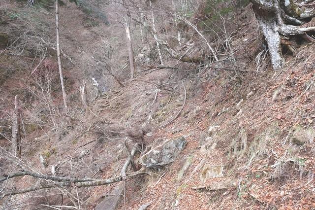 七福ノ滝から三つ峠北口登山道様子