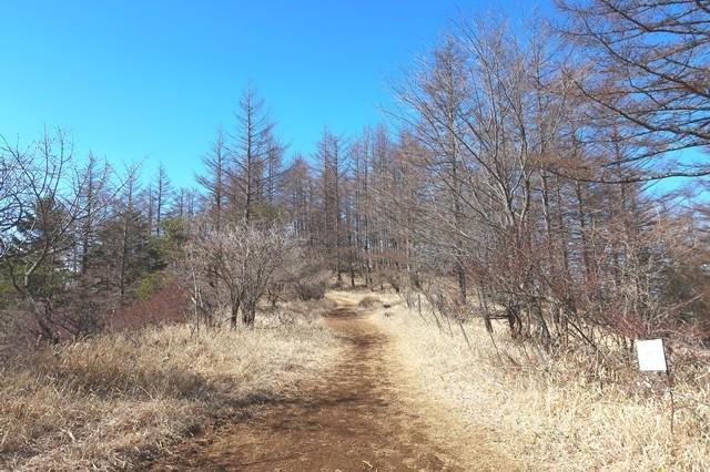 木無山までのルート様子