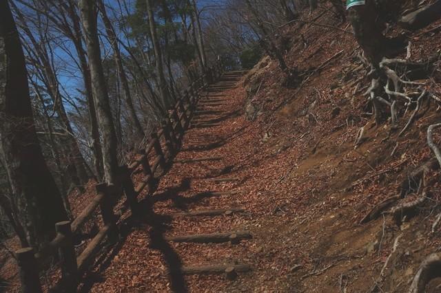 天下茶屋から御坂山(御坂峠)までの登山ルート