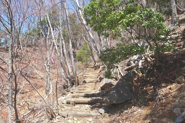 天下茶屋から御坂峠までのルート整備状況