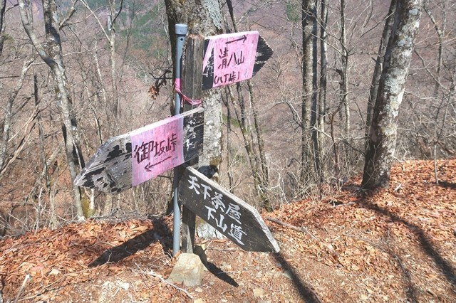 天下茶屋から御坂山・清八山との稜線と合流