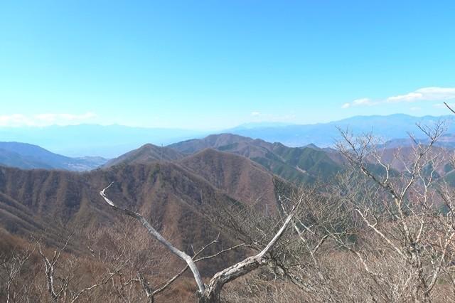 本社ヶ丸への登山道様子