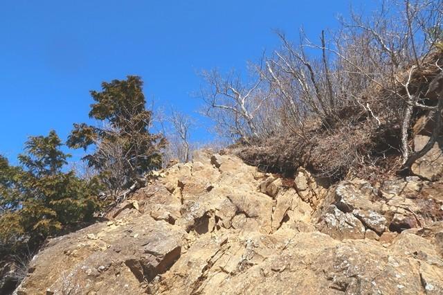 本社ヶ丸への登山道歩き難い箇所