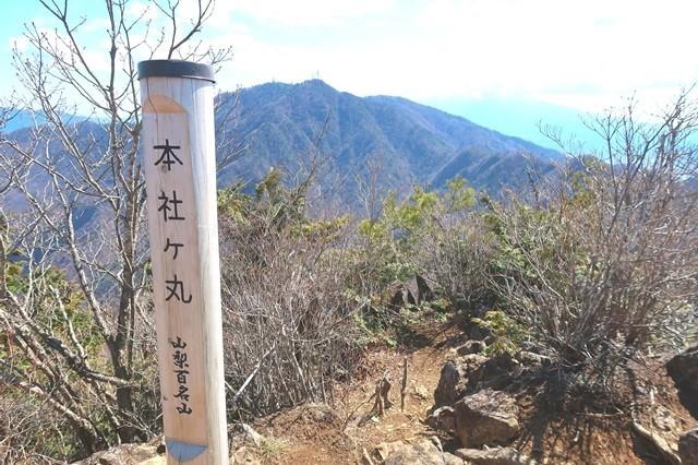 山梨百名山の1つである本社ヶ丸山頂