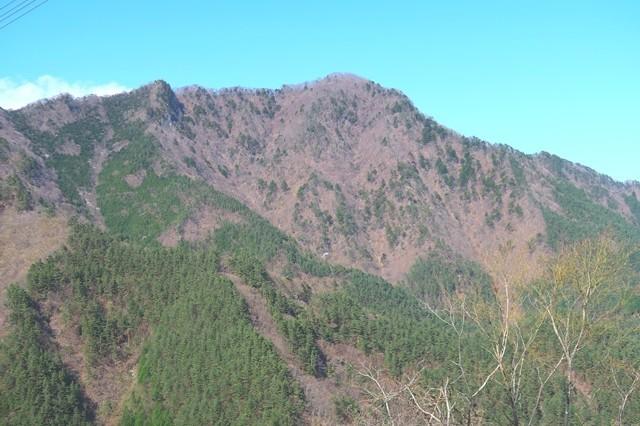 鶴ヶ鳥屋山の景色