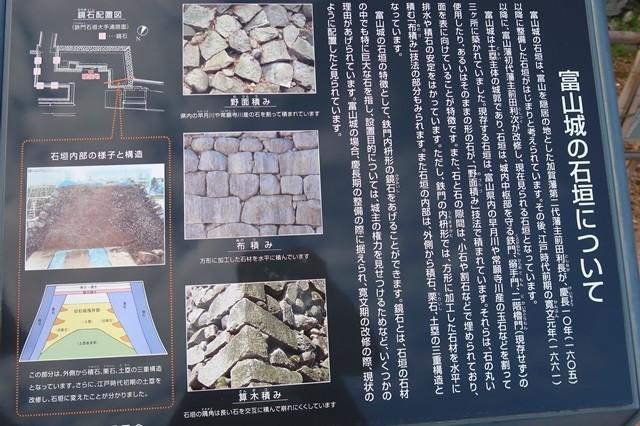 富山城には野面積みの石垣と布積みの石垣等がある