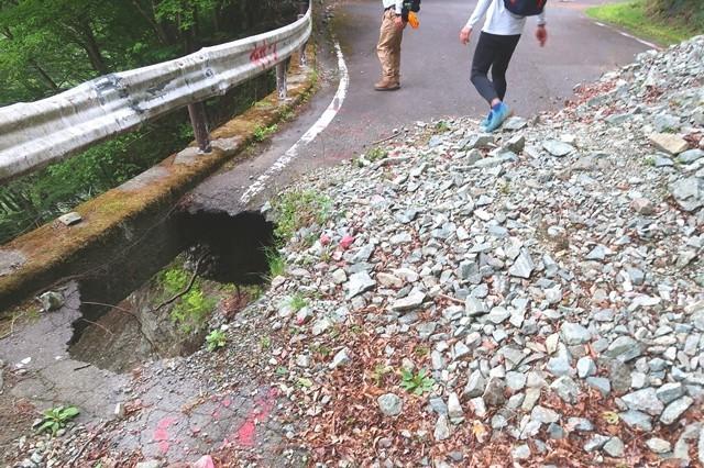 神ノ川ヒュッテ周辺の林道の様子