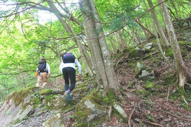 檜洞丸北尾根登山口