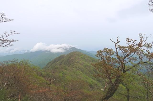 大室山方面の景色