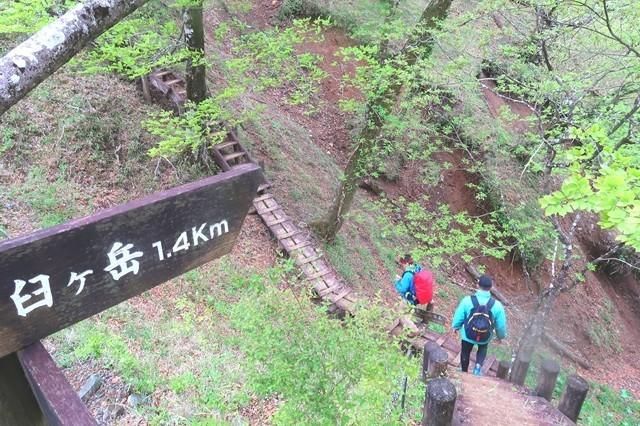 臼ヶ岳までの登山道