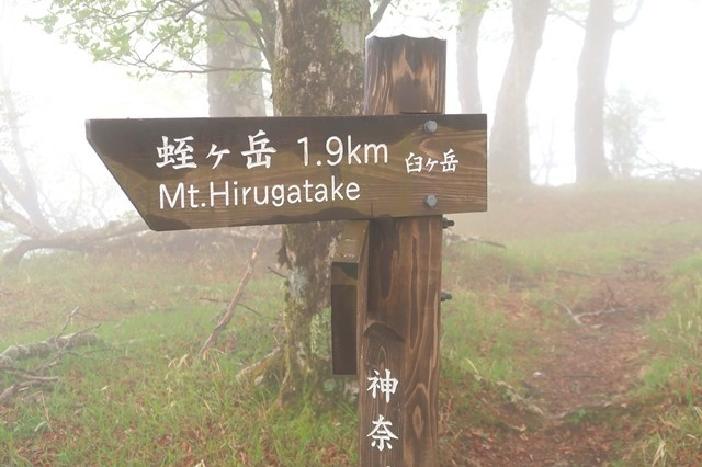 臼ヶ岳の山頂