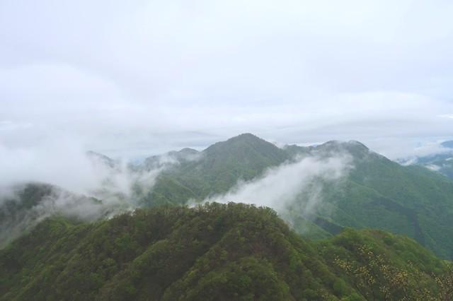 振り返って見る檜洞丸の山頂
