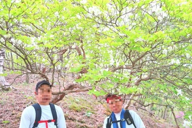 檜洞丸北尾根登山道は丹沢バリエーションルート
