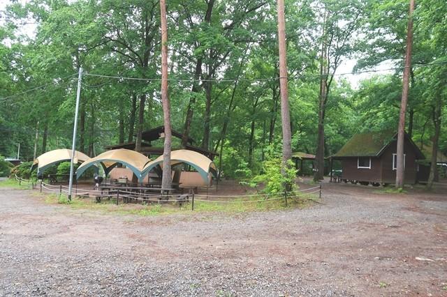 尾白の森キャンプ場のテントサイト周囲の様子