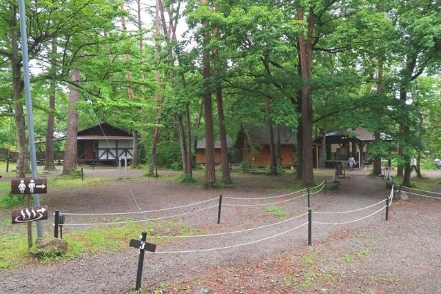 尾白の森キャンプ場の温泉への分岐地点