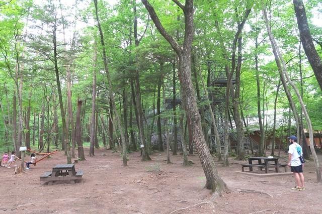 尾白の森キャンプ場のアスレチック