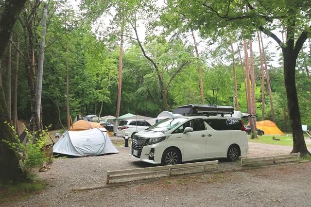 尾白の森キャンプ場のテントサイト