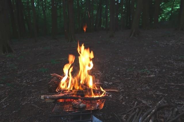 着火剤の代わりに松ぼっくりで火起こしした様子
