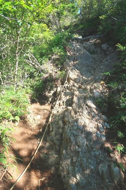 雪頭ヶ岳の登山ルートは悪路