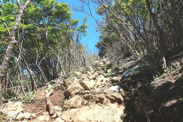 節刀ヶ岳への分岐登山道の様子